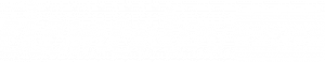Elementor Pro White Logo